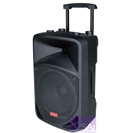Baretone 3H-1212BWR Portable Speaker Wireless