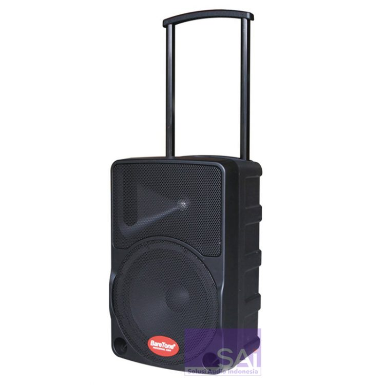 Baretone MAX-10C Portable Wireless Speaker 10-Inch