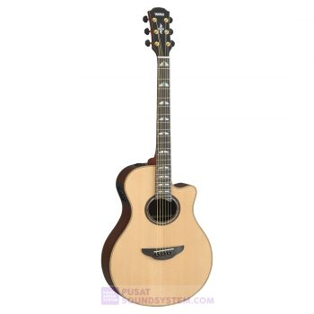 Yamaha APX1200ll Gitar String Akustik Elektrik