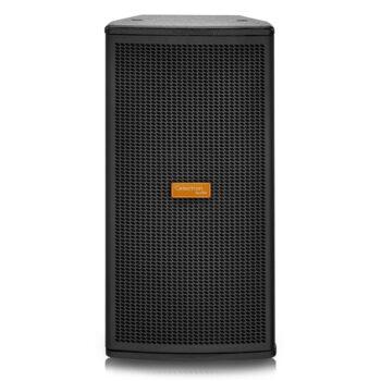 Celectron Audio LT-8P 8″ 800-Watt Professional Passive Spe...